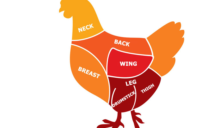 Learn the parts of a Chicken