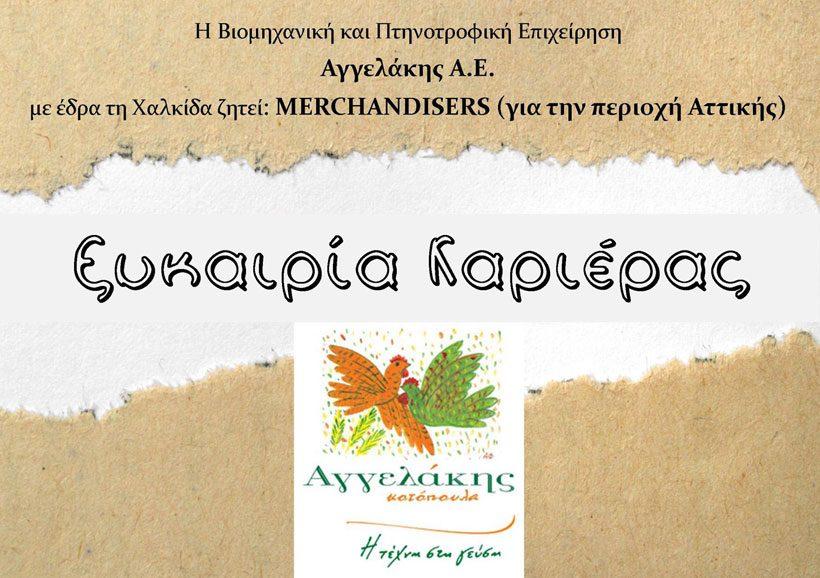 Θέσεις εργασίας: Merchandisers